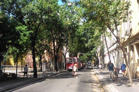 ¡Monserrat, centro de Buenos Aires... precioso!!! - Byt