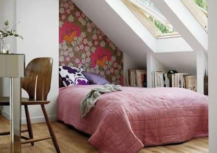 3 Large double bedroom Property - Barnsley - Casa