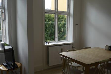 Great Copenhagen apartment, close to - Frederiksberg - Apartment