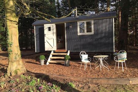 Luxury Shepherd's Hut inc Bathroom - High Kelling - Chata