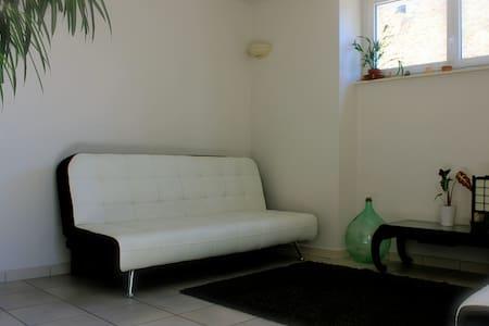 apt near Arbois,SalinslesBains,bath - Appartamento