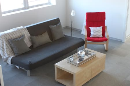 2 Bed/Bath Downtown Apartment 1211