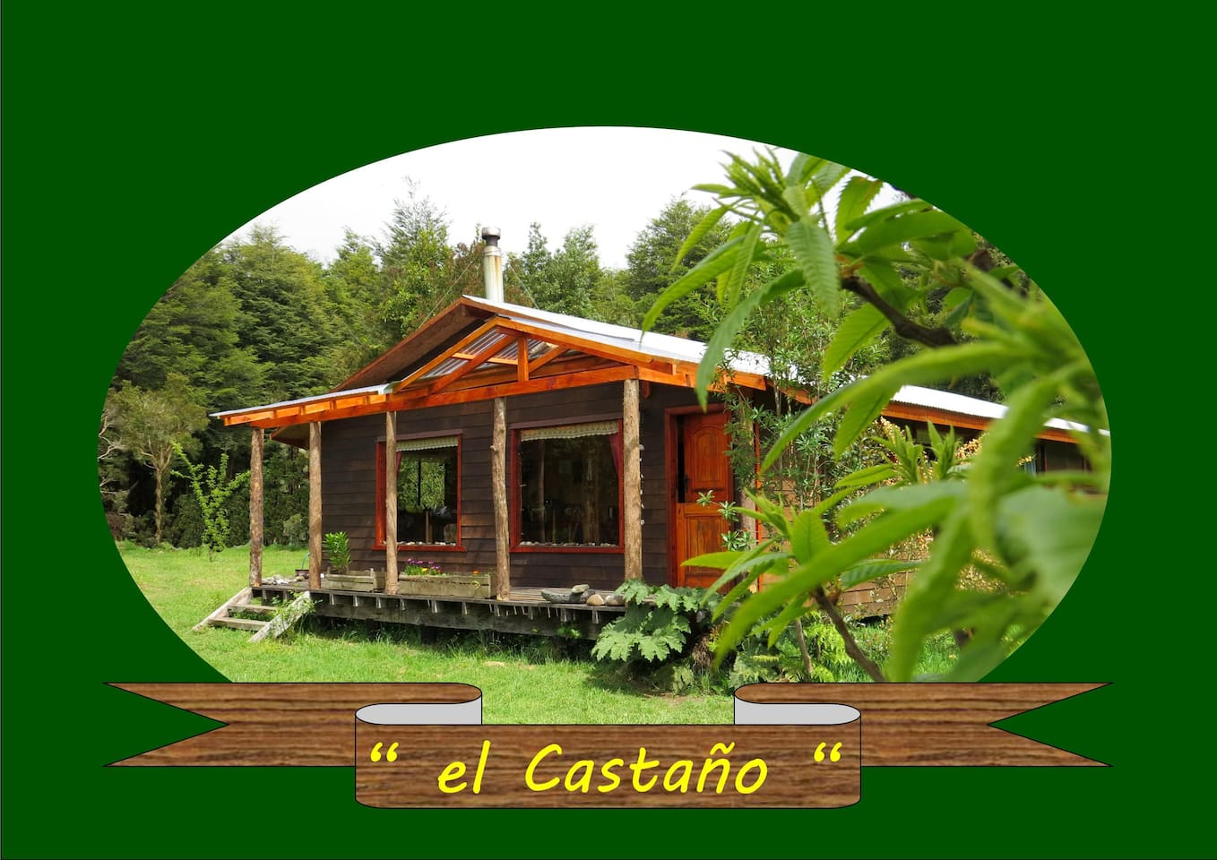 El Castaño ( the Chestnut tree)