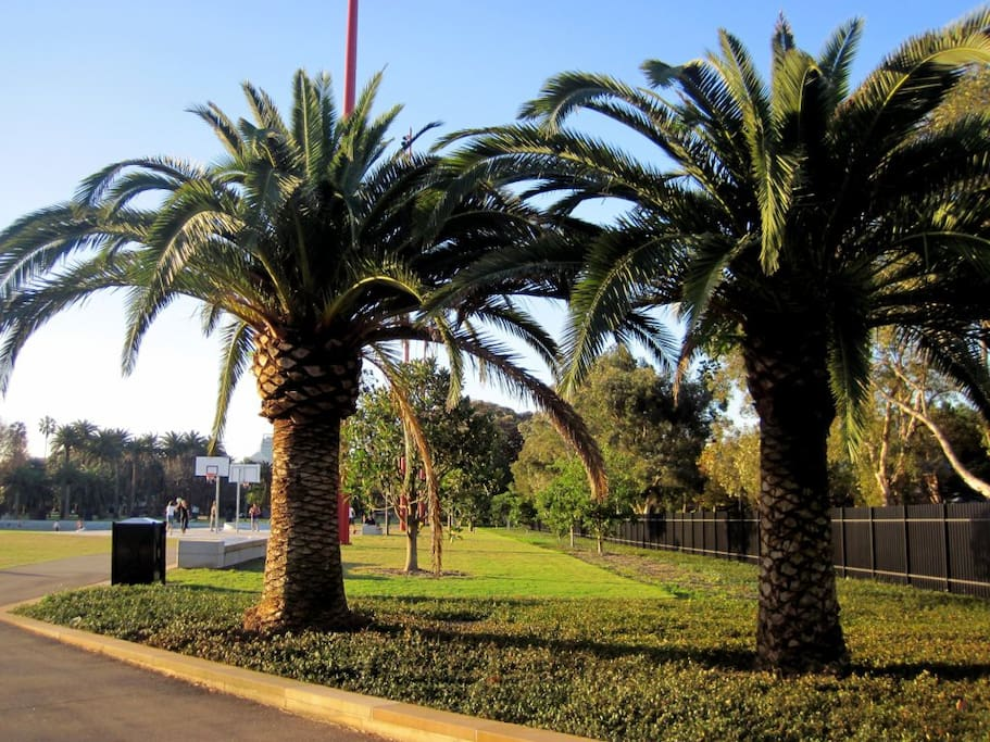 Nearby Redfern Park