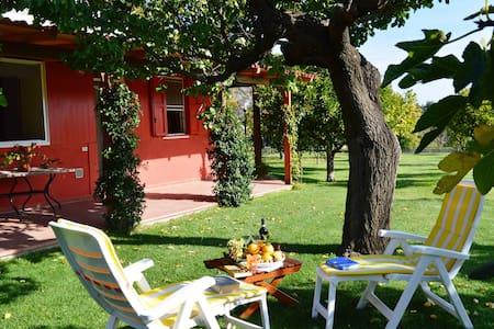 Villa Irene unità B con giardino - Pisticci Matera - Pisticci