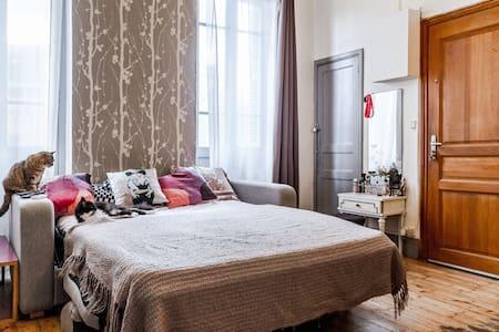 studio très calme et agreable en hyper centre - Apartment