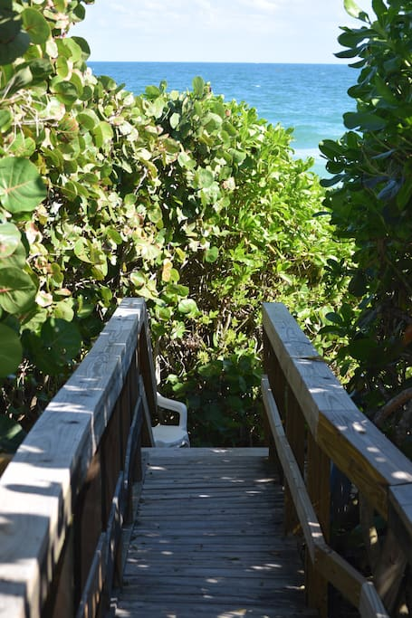 Walkway through the coastal dune to the beach
