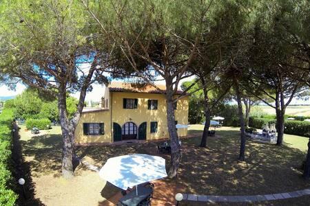 Trilocali La Mazzanta con piscina - Apartment