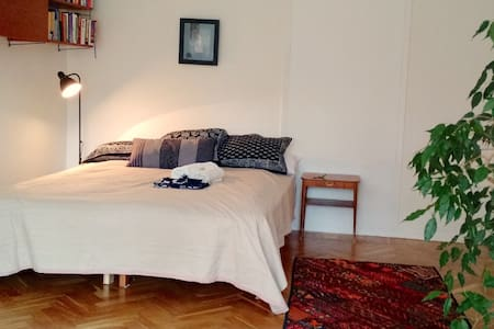 7min Arlanda Airport inc. car transfer. Huge room - Märsta  - Bed & Breakfast