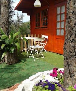 Cabaña Estrella con calefac. y baño - Maçanet de la Selva