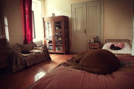 Camera con bagno privato - Gorizia - House