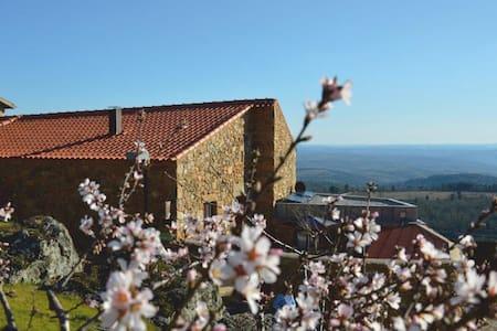 Casa da Amendoeira. Ter | Casa de Campo - Figueira de Castelo Rodrigo