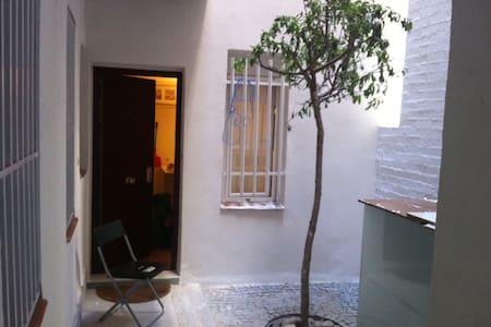 Estudio en Lavapies/loft in the center of madrid - Madrid - Loft