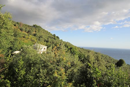 Armonia - Chorefto - Rumah