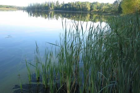 At Home On Eagle Lake  - Hus