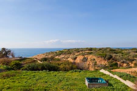 beach front villa - Villa