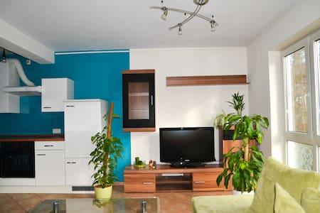 Modern 1 room apartment - Nürnberg - Pis