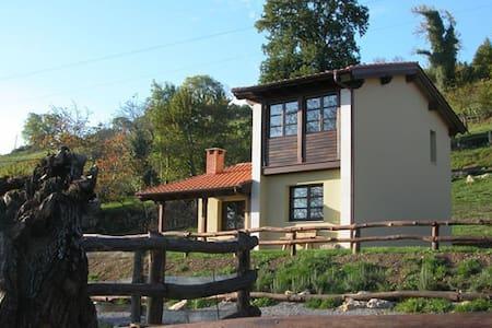 Casa rural    Coviella del Sidron - Asturias - Rumah