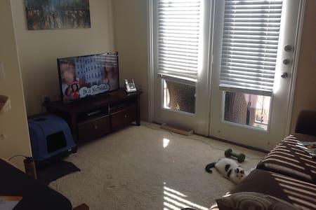 Large studio apartment - Fort Worth - Apartment