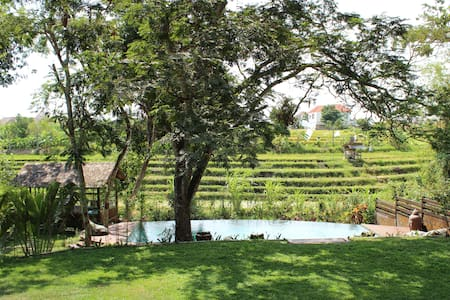 tranquility + view of rice fields - North Kuta - Villa