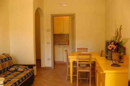 Residenze l'Alberata - App. Luisa - Collepepe - Wohnung