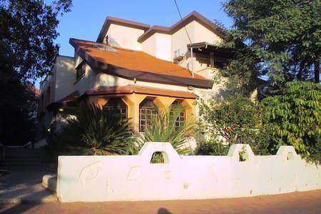 MC Home - Ház