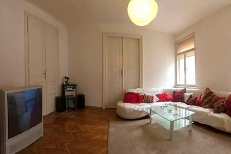 Zagreb budget, center room, kitchen - Apartment