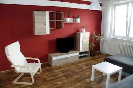 Apartmán 2+1 v Krušných horách - Kovářská