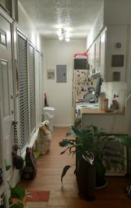 Cute, Cozy Studio in Beautiful Hyde Park - Austin - Apartment