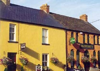 Slatterys Pub and Guesthouse - Kildimo - Bed & Breakfast