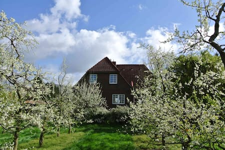 Zwischen Elbe und Obstwiesen - Jork - Hus