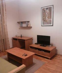 Уютная квартира в Северодонецке - Сєвєродонецьк