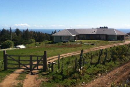House on the Hill/Casa del Cerro - Cobquecura - House