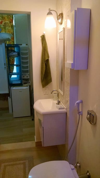 Bathroom with American style safety power outlet. Note no door between room and bathroom but deep inset of toilet and shower provide privacy.