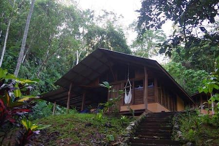 Casa Zenon, gateway to Corcovado - Hus