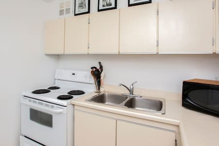 Large 1BR w balcony right downtown! - Toronto - Apartment