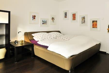 Großzügiges Appartment mit Balkon - Stuttgart - Wohnung
