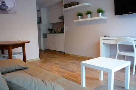 Bidart Magnifique T1 Bis Terrasse - Bidart - Appartement