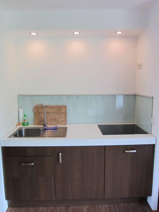 Die kleine Küche mit Kühlschrank, Geschirrspühler und Induktions-Kochfeld.