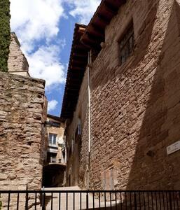 Gothic Palace XIV Century, Cardona - Castell