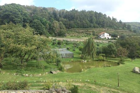 monolocale soppalcato in collina  - Bollengo - Loft