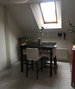 Cute 3.5 rooms apartment - Fribourg - Flat
