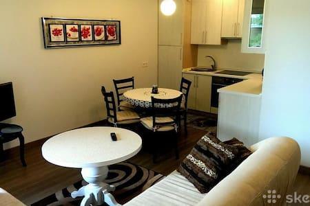 Tatjana Apartment - Palanga