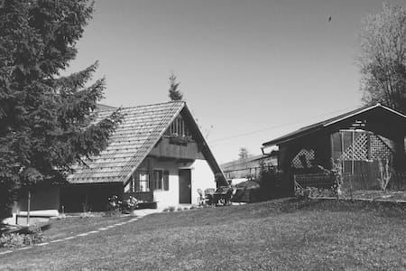 Quiet place in the mountains - Davča - Daire
