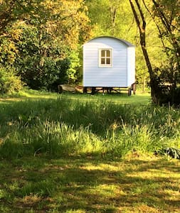 Blue Mountain Hut, Stylish Glamping - Borris