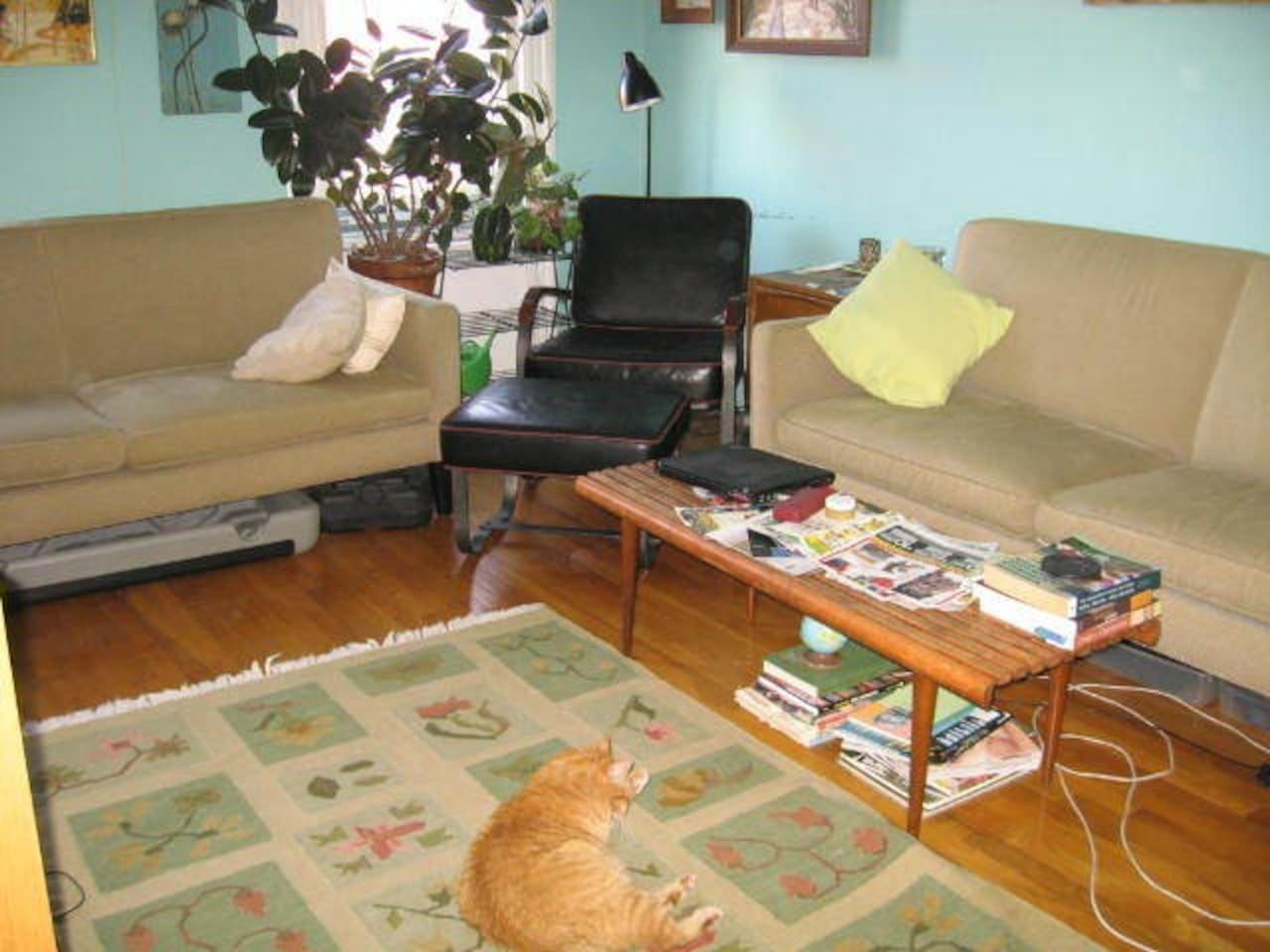 The living room. The sofa on the right has been swapped for a sofabed.