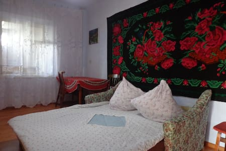 Private room at Constantin's House - Cahul