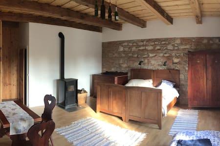 Tágas szoba felújított parasztház/1 - Zirc - Apartmen