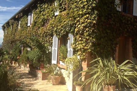 Belle vue sur Pyrénées et village - Carbonne