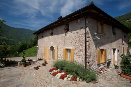 Relax nella natura in intera Villa - Segonzano